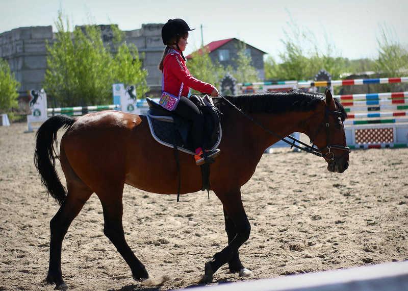 Выезд на конно-спортивную базу 10