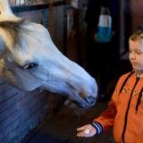 Выезд на конно-спортивную базу 09