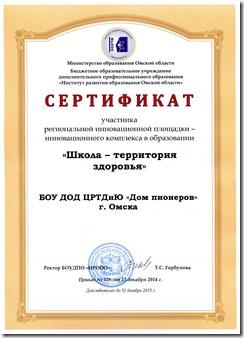Сертификат-участие в ИнКО