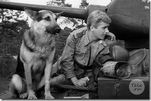 4 танкиста и собака