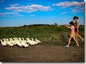 11 фестиваль «Экология. Творчество. Дети