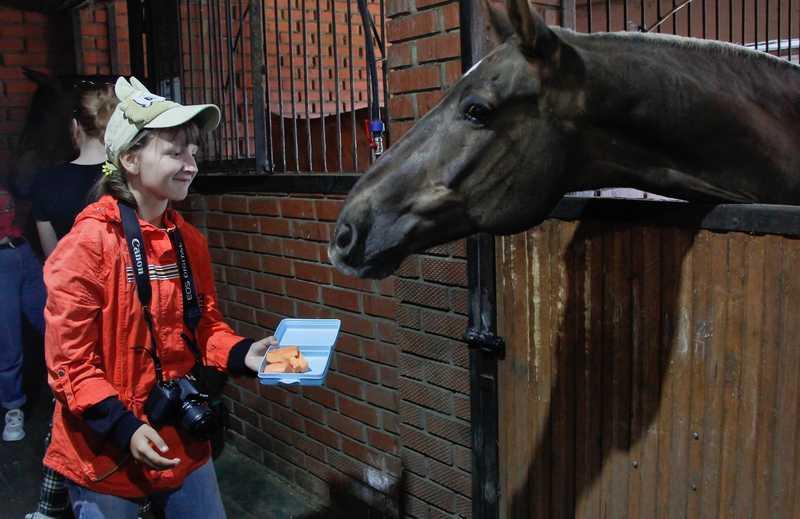 конно-спортивная школа